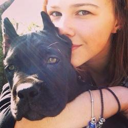 Esmeralda , chien Cane Corso