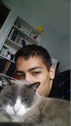 Eyzou, chat Siamois