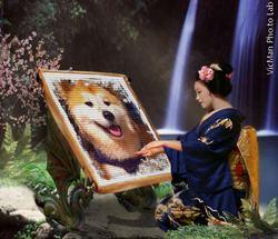F'Kasumi, chien Akita Inu