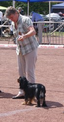 Felindra Love, chien Cavalier King Charles Spaniel