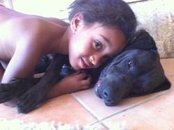 Fidji, chien Chien courant d'Istrie à poil ras