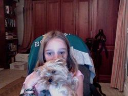 Fred, chien Yorkshire Terrier