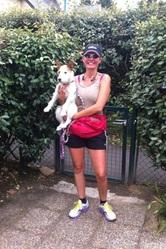 Gelly, chien Parson Russell Terrier
