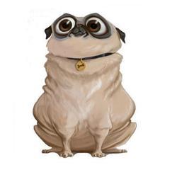 Globule, chien Carlin