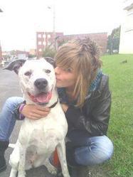 Gucci, chien Dogue argentin
