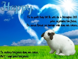Happy, rongeur Lapin
