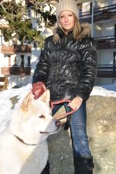 Heicko, chien Akita Inu