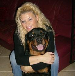 Hisham, chien Rottweiler