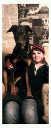 Hitaque, chien Beauceron