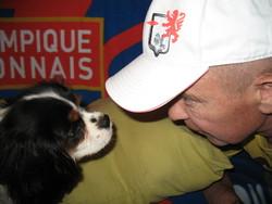 Imarley, chien Cavalier King Charles Spaniel