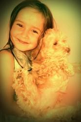 Izi, chien Caniche