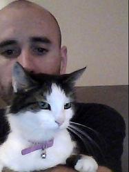 Java, chat Gouttière