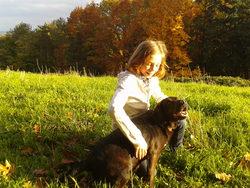 Kenzo, chien Labrador Retriever
