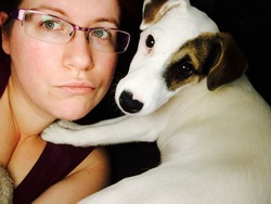 Lemon, chien Jack Russell Terrier