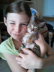 Leonie, chat Oriental
