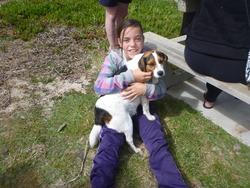 Ma Soeur Et Patch, chien Beagle