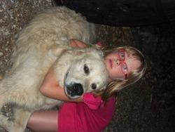 Max, chien Golden Retriever