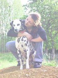 Mélisse, chien Dalmatien