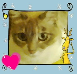 Minette, chat Siamois
