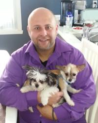 Moly Et Bloody, chien Bichon maltais