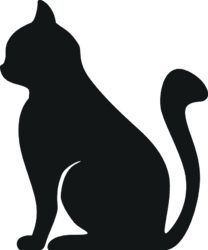 Palouma, chat Européen