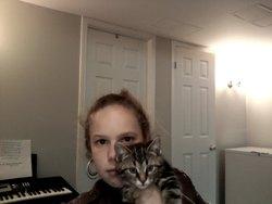 Pastille, chat