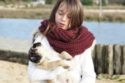 Popi, chien Carlin