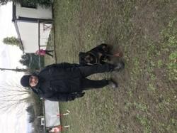 Popsi, chien Rottweiler