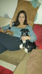 Rex, chien Cane Corso