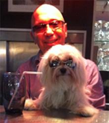 Rotzy, chien Bichon maltais