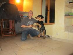 Shiva, chien Beauceron