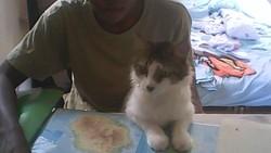 Skytti, chat