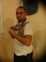Snake, autres