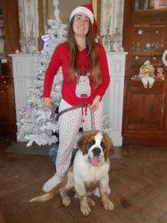 Tania Des Coteaux Lauragais, chien Saint-Bernard