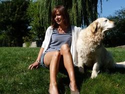 Vanille , chien Golden Retriever