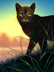 Warrior Cats, chat