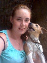 Wiski, chien Jack Russell Terrier