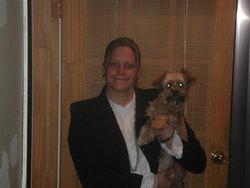 Yochi, chien Yorkshire Terrier