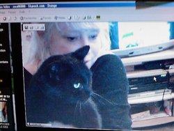 Zaza, chat Gouttière