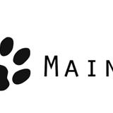 Photo de Maine Coon de l'élevage Maine Coon Suisse