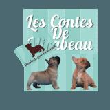 Photo de Bouledogue français de l'élevage Des Contes de Mirabeau
