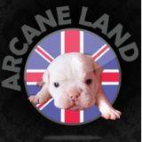 Photo de chiens de l'élevage ARCANE LAND