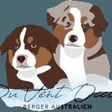 Photo de chiens de l'élevage Du Vent Occitan