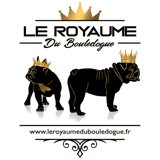 Photo de chiens de l'élevage Le Royaume Du Bouledogue