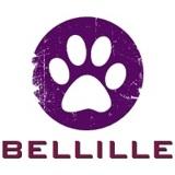 Photo de chats de l'élevage Bellille