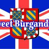 Photo de American Shorthair de l'élevage Chatterie Sweet Burgandy's