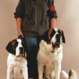 Photo de chiens de l'élevage Des Préludes Du Chassignolan