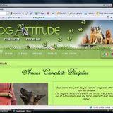 Photo de Berger allemand de l'élevage DOG ATTITUDE
