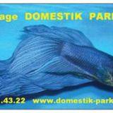 Photo de Souris de l'élevage Domestik park