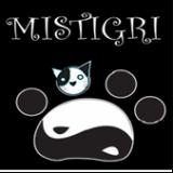 Photo de chats de l'élevage Elevage des Mistigris Jolis